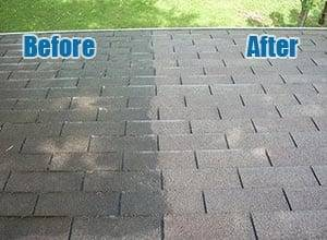 Roof Stain Removal Raleigh